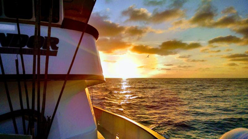 Fishing Charter Sunset